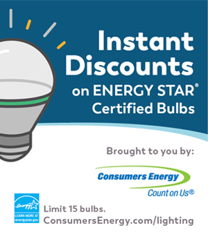 instant discounts on energy star efficent bulbs